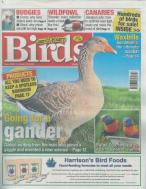 Cage and Aviary Birds magazine subscription