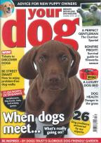 Your Dog magazine subscription