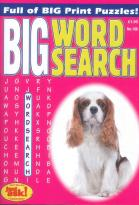 Big Wordsearch magazine subscription