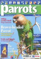 Parrots magazine subscription