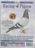 Racing Pigeon magazine subscription