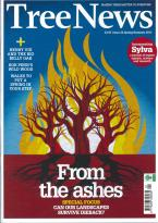 Tree News magazine subscription