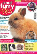 Small Fury Pets magazine