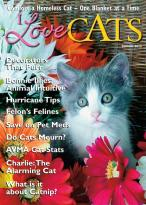 I Love Cats Magazine magazine subscription
