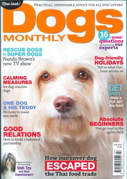 Dogs Monthly magazine subscription